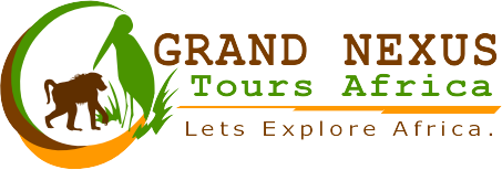 Grand Nexus Tours Africa - Lets Explore Africa - logo