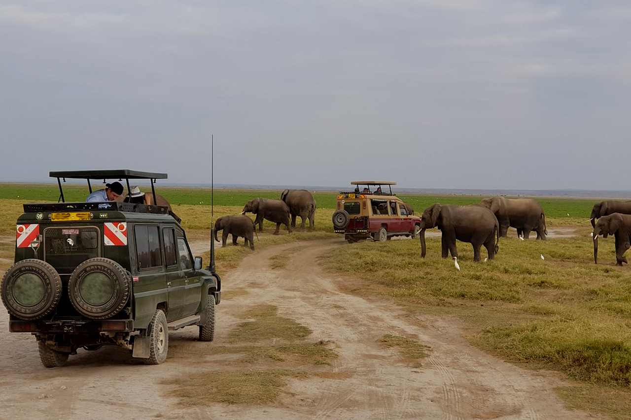 7-days-kenya-wildlife-safari-tour-game-drives-in-amboseli-national-park